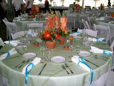 Linens and Napkins